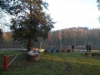 borovice-13-10-11