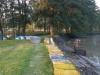 borovice-13-10-20